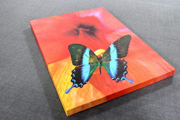 <div>Stretched Canvas Prints</div>