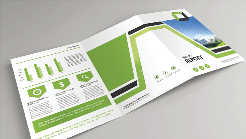 Standard Company Profile - Zoom 1 Image