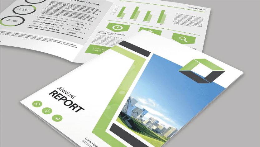 Standard Company Profile - Zoom 2 Image